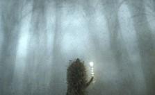 il-riccio-nella-nebbia-due